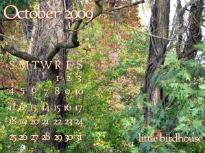 Calendar, October 2009